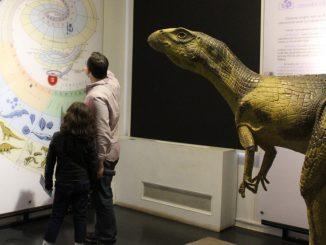 """Muzeul Național de Istorie Naturală """"Grigore Antipa"""". FOTO Facebook"""